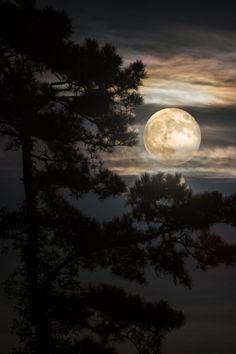 Fullmoon Horizon by Mark Hazelton