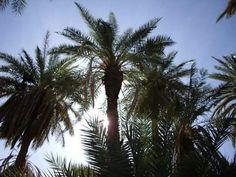Tata ♡ Sud du Maroc