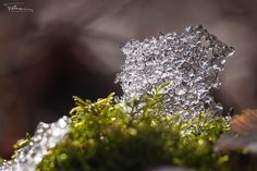 Emmental winter ...by Martin Tuma