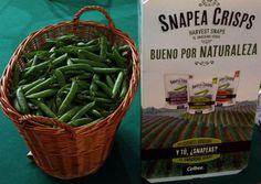 A menos legumbres, más #obesidad - Contenido seleccionado con la ayuda de http://r4s.to/r4s