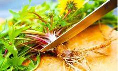 Aceasta ar fi planta care trateaza si previne cancerul. Este un leac miraculos cunoscut inca de pe vremea stramosilor nostri Carrots, Cancer, Herbs, Vegetables, Health, Food, Plant, Health Care, Essen