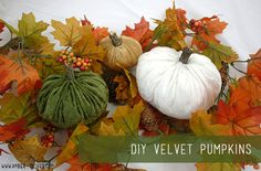 With just a few items and about 30 minutes of your time you can make these gorgeous DIY velvet pumpkins for your home too!