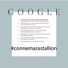 """According to our GOOGLE sources, Blue has achieved the number 1 ranking Position for the search term """"Connemara Stallion."""" #teamblue #connemara #connemarapony  #connemarasofinstagram #redbudranch #rbluemoon #connemarasdoitall #instapony_ #goodpony #1 #google #ponystallion #connemarastallion #connemarasmostwanted Connemara Pony, Blue Moon, Ponies, Ranch, Positivity, Number, Sport, Google, Guest Ranch"""