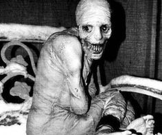 the russian sleep experiment - Google Search