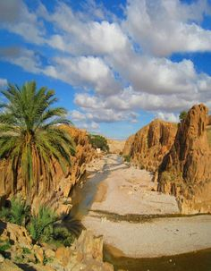 Bousaada, Algeria http://www.jetradar.com/?marker=126022 http://abnb.me/e/1Bw4yfnlSC