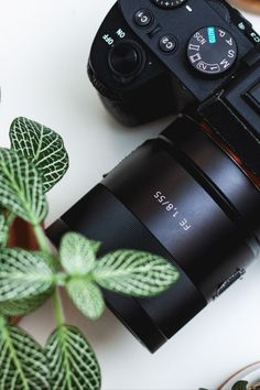 Decide whether or not it makes sense to upgrade your Sony A7 camera!