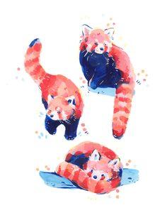 Discover recipes, home ideas, style inspiration and other ideas to try. Panda Sketch, Panda Drawing, Panda Illustration, Cute Animal Drawings, Cute Drawings, Pretty Art, Cute Art, Red Panda Cute, Posca Art