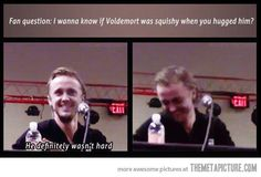 Oh my God Tom Felton no innocent people- wait there's no innocence in this world. Harry Potter Jokes, Harry Potter Cast, Harry Potter Universal, Harry Potter Fandom, Harry Potter World, Hogwarts, Voldemort, No Muggles, Yer A Wizard Harry