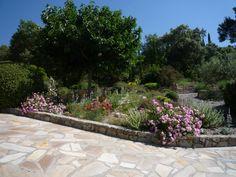 garden designed by Sally Perigo