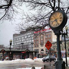 Harvard Square in a snowy morning ⛄ (2013.02.19) Cambridge - Massachusetts