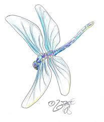 dragonfly tattoo - Sök på Google