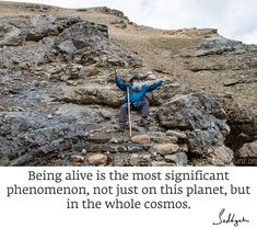 Cosmos, Planets, Quotes, Qoutes, Dating, Universe, Quotations, Shut Up Quotes, Quote