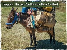 The Less You Know the More You Need : Preppers