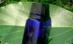 3 Essential Oils that Heal