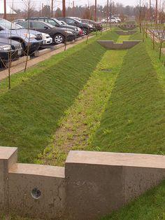 A Return to the Parrish Art Museum Landscape Architecture, Landscape Design, Retention Pond, Water Collection System, Retaining Wall Design, Yard Drainage, Permaculture Design, Water Management, Rain Garden