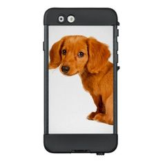 #Cute Dachshund Puppy Dog LifeProof® NÜÜD® iPhone 6 Case - #dachshund #puppy #dachshunds #dog #dogs #pet #pets #cute