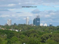 Shot from the train going through the suburb of Shenton Park, this shows the tops of the city's tallest skyscrapers above the greenery of Kings Park.