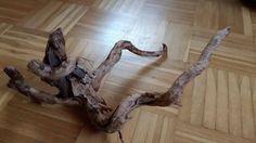 Mangroven - Fingerwurzel - Echtholz - Versteck - Aquathier