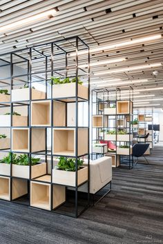 space divisions inspiration for corporate design