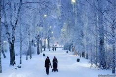Fond memories of wintry Helsinki as snow falls on Seattle. Photo courtesy of Helsinki City Tourist Information. Winter Photos, Winter Ideas, Winter Scenes, Snow Scenes, Countries Of The World, Beautiful World, Places To Visit, Around The Worlds, Snow