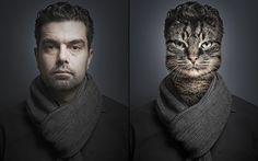 Caras de gatos se fusionan en las de sus amigos humanos - POP-PICTURE: Tu Mundo En Imágenes