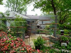 Safe, Friendly Cat and Dog Enclosures Dog Enclosures, Diy Cat Enclosure, Cat Shack, Cat Habitat, Cat Run, Animal House, Cool Cats, Animals And Pets, Habitats