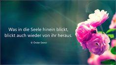 Gedichte und Liedtexte von Önder Demir: Was in die Seele hinein blickt