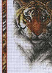 """Janlynn Tiger Wildlife Mini Counted Cross Stitch Kit 5""""X7"""" 14 count 13-0261; 2 Items/Order by Janlynn, http://www.amazon.com/dp/B0033PIDB2/ref=cm_sw_r_pi_dp_vwJKrb0C0GZ8F"""