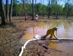 Full Extent of Heavy Metal Contamination in Exxon Oil Spill Still Unknown Levels of manganese, a neurotoxin, in the cove and in a nearby creek were 10, 20 or nearly 30 times above the EPA's safety standard for tap water.