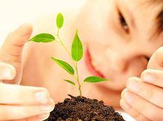 Lo que se siembra se cosecha...  Quienes somos emprendedores TENEMOS QUE ENTENDER, que si de verdad queremos lograr la vida de nuestros sueños, no nos quedaremos esperando un milagro para que todo suceda para el día de mañana... Sabemos que nuestro éxito depende de el trabajo que hagamos hoy, y solo hasta después cosecharemos los resultados. Visita mi blog en => http://ProsperandoUnidos.com