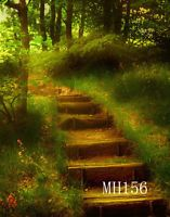 6x9ft Forest Stairs Vinyl Studio Backdrop Photography Photo Background MH156