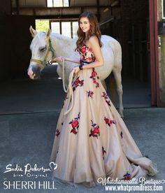 love this prom dress, my dream 2016 prom dress to be a pricess