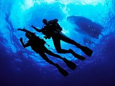 Scuba Diving courses in Cape Town, South Africa - Dirty Boots Shark Diving, Scuba Diving Gear, Cave Diving, Tsitsikamma National Park, Learn To Scuba Dive, Whale Watching Season, Scuba Diving Courses, Maui Vacation, Adventure Activities