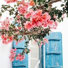 Mýkonos, Cyklades, Greece  #mykonos #cyclades!   By @escapebuttonblog.