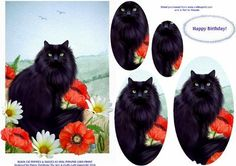 BLACK CAT POPPIES DAISIES A5 OVAL PYRAMID CARD FRONT on Craftsuprint - Add To Basket!