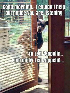 Music calms the common beast! HOPEFULLY!!