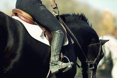 equestrian bitch