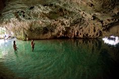 The cenotes in the Tulum Mexico are so unique to the area and a must on any day adventure while in the Riviera Maya