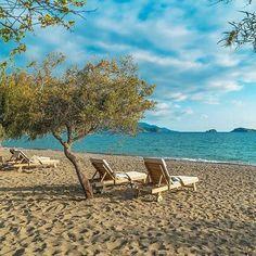 Sonbahar Güneşi - A Sunny Autumn Day Yonca Lodge Hotel Beach - Fethiye  http://www.kucukoteller.com.tr/fethiye-otelleri.html?utm_content=buffer6b148&utm_medium=social&utm_source=pinterest.com&utm_campaign=buffer