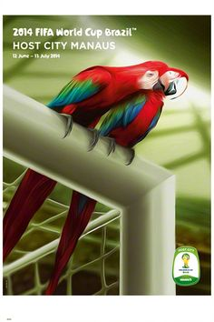 FIFA World Cup 2014 Official Venue Poster - Manaus ~available at www.sportsposterwarehouse.com