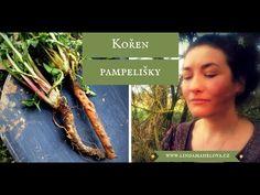 Kořen pampelišky má mnoho vynikajících účinků na organismus. Jak je možné kořeny využít se dozvíte v článku. Korn, Asparagus, Food And Drink, Youtube, Gardening, Cooking, Fitness, Chemistry, Kitchen