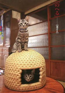 If she ever gets a cat, I will get her one of these Japanese cat baskets.