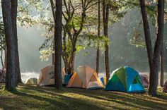 What is the longest you have ever camped out in a tent?