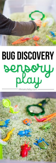 This bug sensory bin activity is so much fun for kids! Learn about bugs and have fun with this sensory play activity!