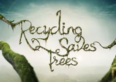 Recycling Saves Trees