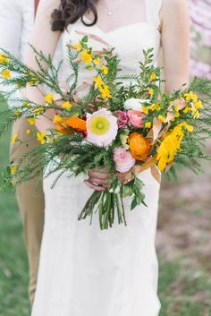 haley tobias blog: Wes Anderson Vineyard Wedding