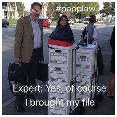 Expert files - CCP 2034.415
