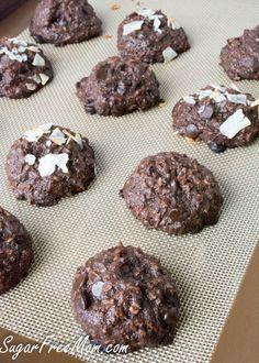 Sugarfreemom Com Recipes Flourless Sugar Free Chocolate Coconut Cookies