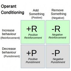Operant Conditioning Simplified