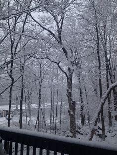 snow #winter